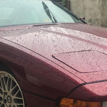 BMW 850 e31 Po renowacji_2